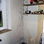 schimmelpilze hinter tapete institut f r energieberatung und baubiologie. Black Bedroom Furniture Sets. Home Design Ideas